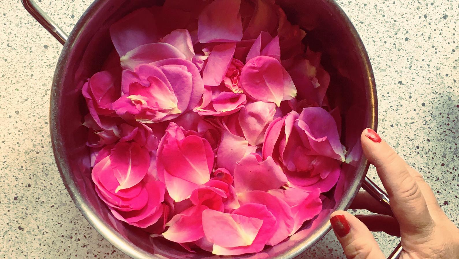 rosenblade_stinamy